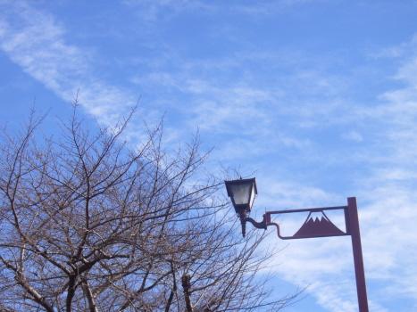 2月23日の今日は、富士山の日。二=ふ、二=じ、三=さん…って、得意の語呂合わせなんだけどねぇ🗻/旧暦1/19・辛卯