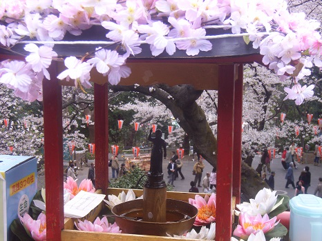 4月8日は、お釈迦様の誕生日。都内の仏教寺院でも、今日は、お釈迦様を配した花御堂を華やかに飾って「灌仏会」…だと思います(*'▽')。/旧暦2/27・丙戌