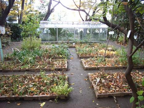 200712牧野庭園2