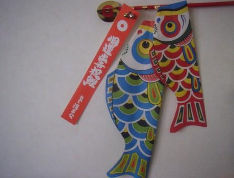 しょうこさま鯉201105