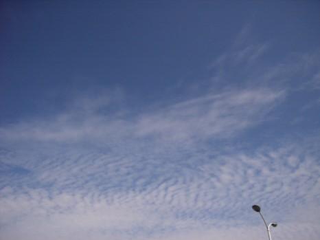 20098月15日朝の空