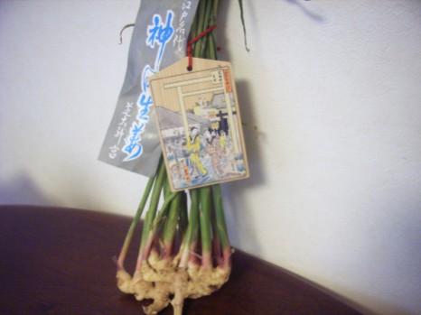 葉付き生姜
