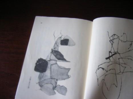 『仰臥漫録』の挿絵2