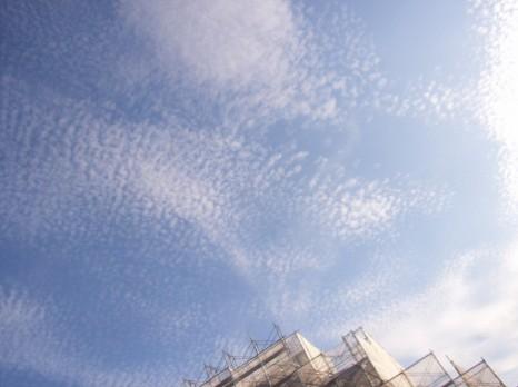 イワシ雲2