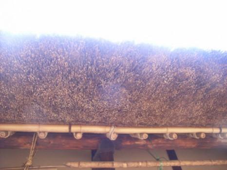 茅葺屋根の厚み