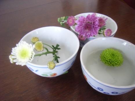 菊を茶碗に