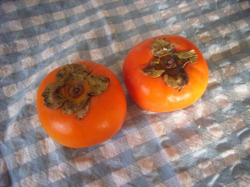 柿の実が、街の灯りのように実り始めたころが柿の旬。/10/27=旧 閏9/4・辛未