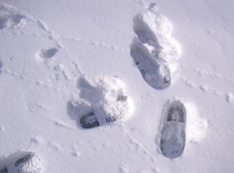 二十四節気は、本日「大雪」。暦の上では冬真っ盛りです。/12/7=旧10/16・壬子