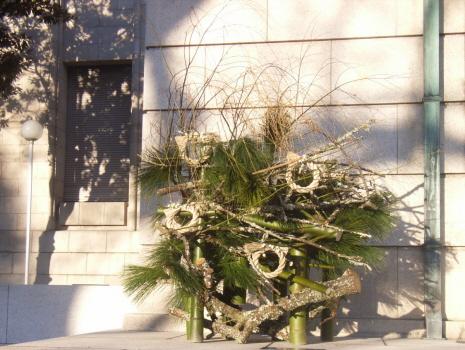 東京地方の松の内は、他の地方より短くて、あっという間に「門松」飾りもしまいです。急いで急いで見てください/1/5=旧11/15・辛巳
