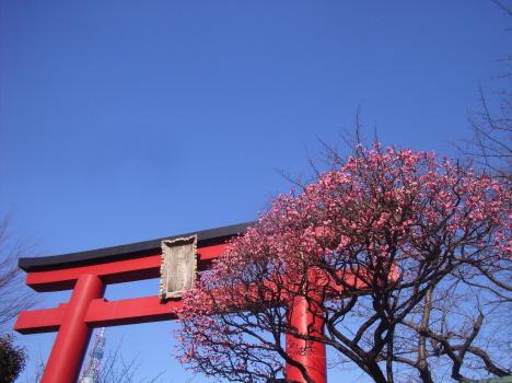 25日は天神様に縁深い日。そして3月の今日は、命日の供養祭事「神忌祭」が執り行われます/3/25=旧2/6=庚子