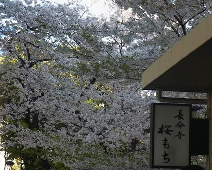 長命寺桜もち