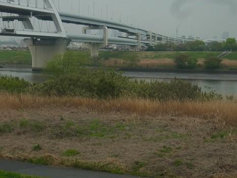 江北橋の袂 荒川