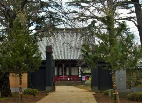 寛永寺の門松