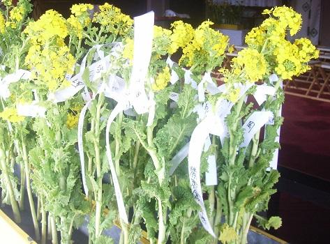 2月25日は、菅原道真公=天神さんのご命日。亀戸天神では、「菜種御供」の神事です。/2/25=旧1/29・癸未