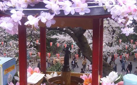 花に甘茶に、美しきお釈迦様の誕生祝い。今日は「灌仏会」です!/4/8=旧3/12・乙丑