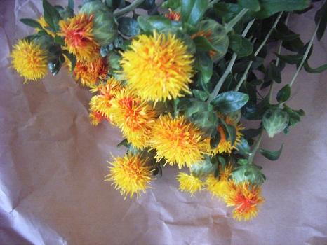 七十二候は今日から「紅花栄」。咲くの意味に「栄」の字をあてたトコに昔の紅花の希少性を感じてみたり。そして今年も部屋に飾る。/5/26=旧4/20・戊申