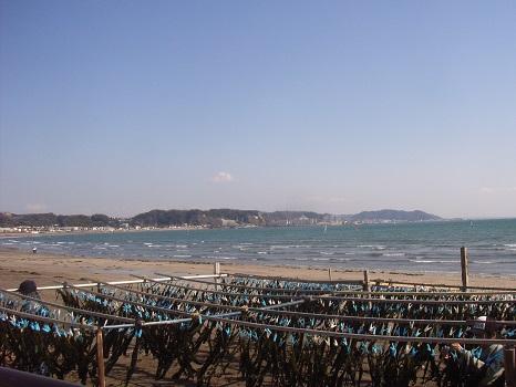 鎌倉の春の海