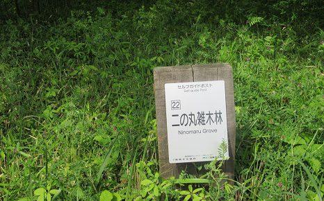 はじまりましたね、初夏のお休み。今日は「昭和の日」なのでゆかりの場所へ。/4/29=旧4/4・乙酉