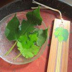 晩夏になって、今日は旧暦の七夕です。ってことで念願の梶の葉で室礼…もどきを。/旧暦7/7・丁亥