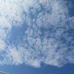 七十二候は「綿柎開」に。「開」くのは、花なのか、綿花ことコットンボールか?せめてモフモフ綿雲を眺めたいこの頃。/旧暦7/4・甲申