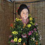 二十四節気は「寒露」。暦が「寒」の文字を使い始めればそろそろ菊の花が旬。東京の菊まつりは谷中でスタートです。/旧暦8/19・戊辰