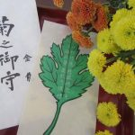 今日は、浅草寺「菊供養会」。今日のみ授与いただける「菊之御守」の美しい意匠を眺めつつ飾る。/旧暦8/29・戊寅