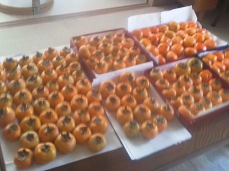 母の家の柿