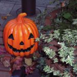 今年は、全然10月らしさを堪能できず、晩秋。そして、今日のハロウィン🎃が運んでくるのは冬だより…な気がする。/旧暦9/12・辛卯