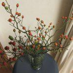 小菊に野茨、そして風船葛。…ささやかな、母の庭からの土産は、まだまだ我が部屋を彩ってます。/旧暦9/25・甲辰