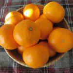 冬は、国産柑橘のシーズン、我が家にもその第一弾来る。で、温州みかん!/旧暦11/4・壬午