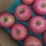福島よりりんごひと箱着!!これで、年末年始のフルーツ対策は万全である😊。/旧暦10/19・丁卯