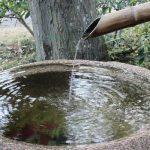 七十二候は「水泉動」に。水も温かに…と暦は言ってるけど御冗談っ!晴れた日々の東京、かえって寒い。/1/12=旧11/26・甲辰