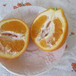 買い物に行ったら、フルーツの棚がオレンジ色に?もう「春みかん」の旬かぁ!ってことで「デコポン」から春柑橘スタート🍊。/旧暦1/11・己丑
