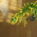 三寒四温の日々は、春まじかの証拠。…と、この時期、やけに目に付く「春の黄い花」が言っている。で我が家にも一輪。/旧暦1/21・己亥