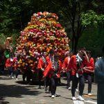 今日は日枝神社の山王祭。江戸時代より続く天下祭を堪能しに祭礼行列を追っかけたくっ!/旧暦4/25・辛未