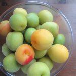 七十二候は「梅子黄」に。今日は、夏保存食の王道「梅シゴト」です。/旧暦5/4・庚辰