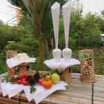 今日は「中秋の名月」です。ならば向島百花園の「お供え式」は?…ああ例によって中止でした😢。今年は、昨年の写真眺めて良しとします。/旧暦8/15・丁丑