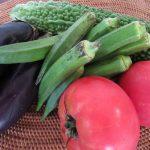 秋がやってきたことだし「夏野菜」は食べ納め。おかげさまで、夏の暑さを乗り切れましたっ!ありがとー😊。/旧暦8/7・辛亥