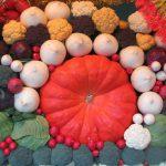 今日の「勤労感謝の日」は、かつて「新嘗祭」。今日は、神様に秋の野菜や米を供える収穫祭でもあるのです。/旧暦10/9・庚午