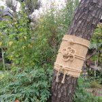 七十二候は「熊蟄穴」に。暦は野生動物の冬眠の頃と言う今頃は、公園・庭園の樹々が冬支度です。/旧暦10/27・戊子