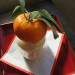 さて、鏡餅も買い求め、お正月飾りも完了!バタバタしがちな年の暮れですが、なんとか新年のお迎え準備も整いましたっ😊。/旧暦11/23乙未