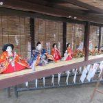 2月中旬過ぎれば、街のそこかしこに雛飾り。雛人形たちは、かつて屋敷内で飾られ、今は街を飾ります。/旧暦1/26・戊戌