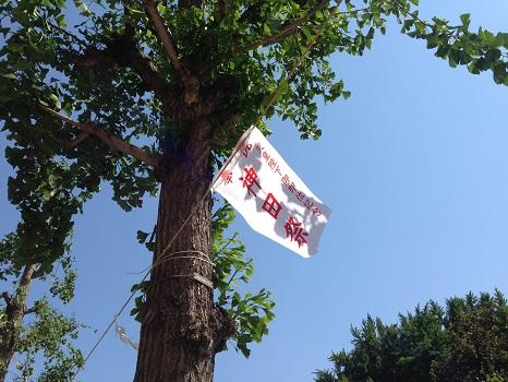 神田祭の幟