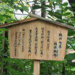 「秋の七草」探し。「萩」はまだ、「藤袴」もまだまだ。なので、今年も「佐原鞠塢(きくう)バージョン」にて寄り道。/旧暦8/8・丙午・上弦