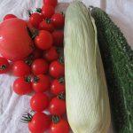 「白露」だ「草露白」だ!食べ忘れてないか「夏野菜」。…ってことで買ってきました食べおさめ夏野菜(*'▽')。/旧暦8/14・壬子