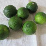季節が「白露」とか「草露白」といえば…さっそく出回り始めてますね「酢橘(すだち)」。まずは、炊き立てご飯に絞って食す。/旧暦8/13・辛亥