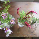 母の庭からの彼岸帰省土産。秋桜はまあまあ、犬蓼&鶏頭は長持ち元気で、いまも部屋を飾る。/旧暦9/8・丙子