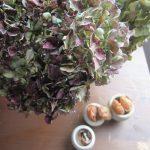 部屋に飾った枯れ紫陽花に風船葛。枯れた姿も様になるのは植物のチカラと冬の柔らかなヒカリのおかげか。…ああもう冬だねぇ。/旧暦10/21・戊午