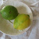 暦が「橘始黄」といううちに、今年のレモンを。国産だからわざわざ「檸檬」と書いたりして(*'▽')。/旧暦11/10・丁丑