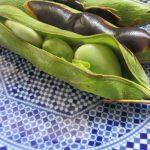 やぁ~っと「空豆」に遭遇。焼いて茹でて炊き込んでめいっぱい楽しみます(*'▽')。/旧暦・閏4/9・甲戌